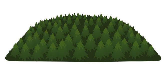 Já do lesa nepojedu