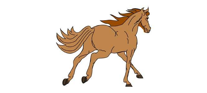 Já mám koně