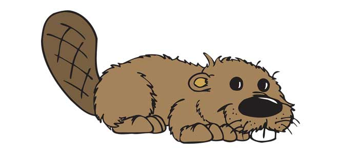 Když jde malý bobr spát