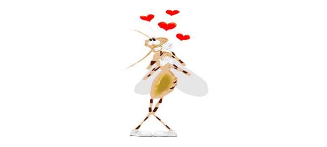 Komáři se ženili