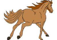 Náhled Já mám koně
