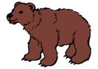 Náhled Medvědi nevědí