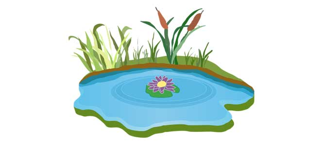 Už se ten Tálinskej rybník nahání