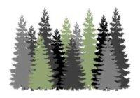 Náhled Hajný je lesa pán