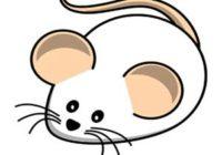 Náhled Vařila myšička kašičku